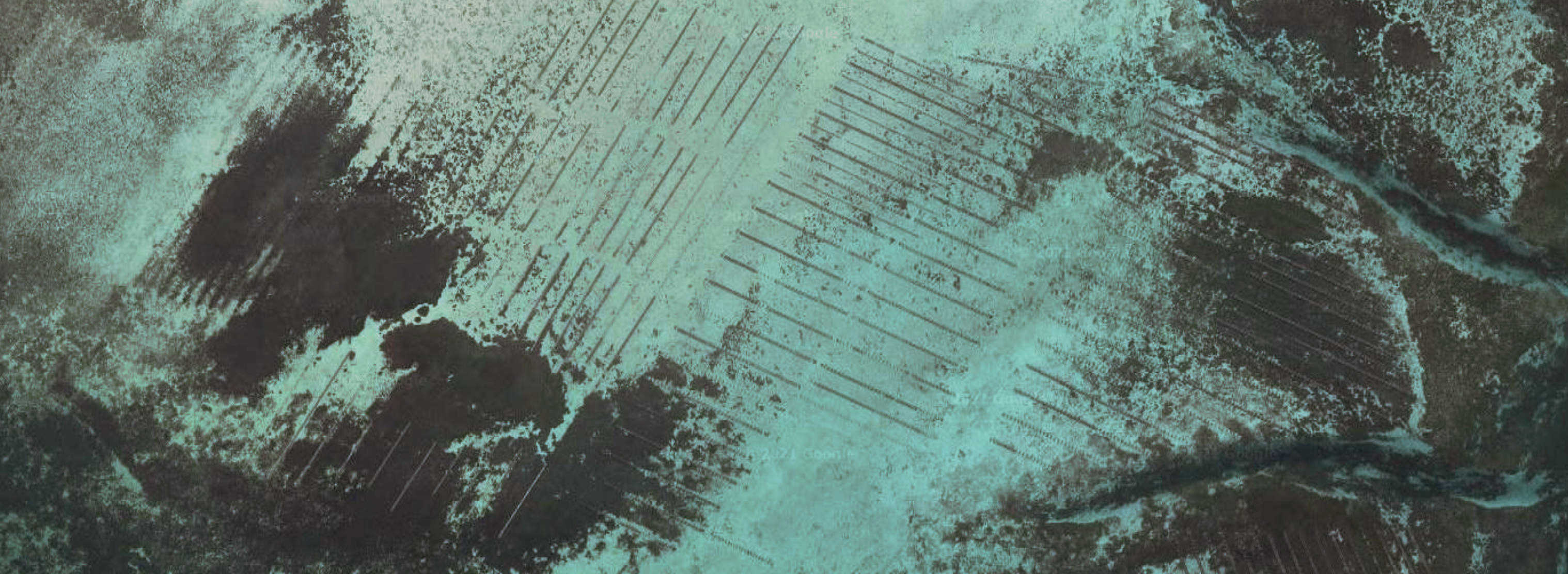 Satellite image of oyster farm, Tasmania
